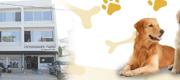 Serving Finest Veterinary Care